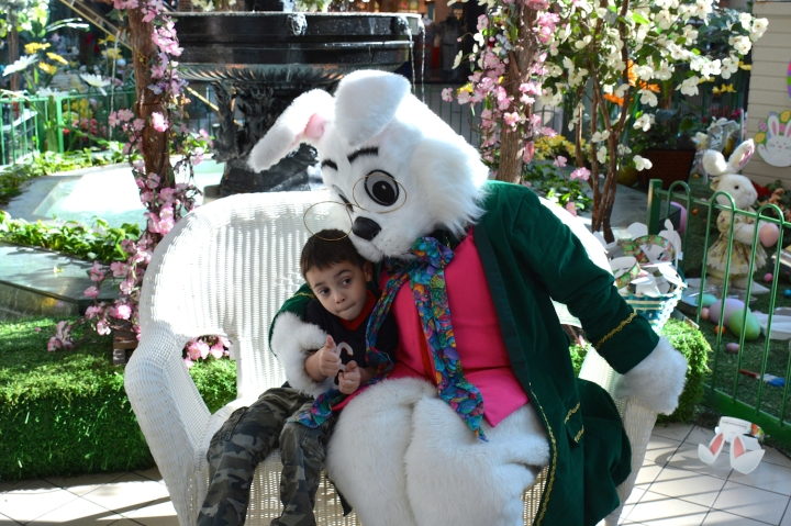 Caring Bunny with Noah Contree